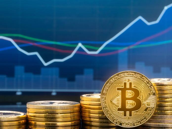 Genesis11 Review – A New Trader's Dream Come True